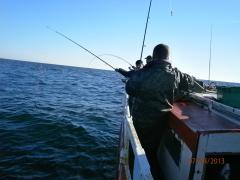 P9072064 wędkarz morski