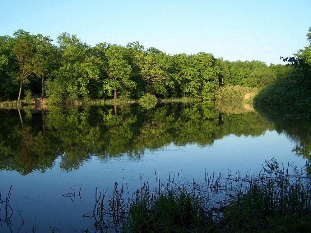 Jezioro.jpg.jpg