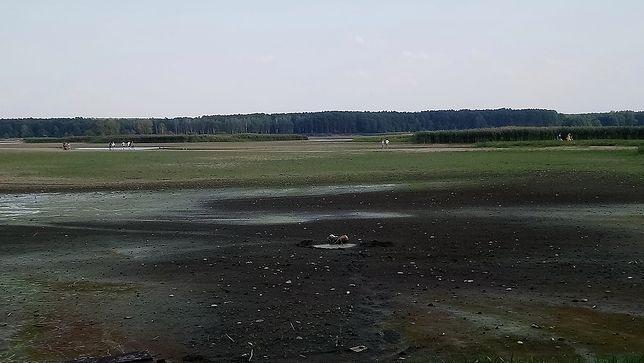 zalew-sulejowski 2.jpg